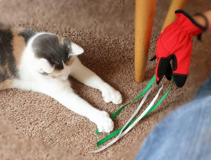 Перчатка с лентами для игры с кошкой