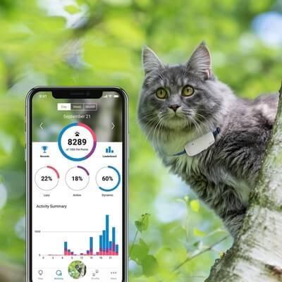 Tractive GPS-трекер для кошек, белый
